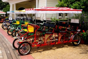 Surrey Bicycle Image Retrieved from disboards.com